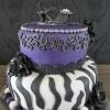 Paars / Purple / paars is mijn kleur