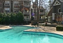 Richmond apartments for rent / The best apartments to rent in Richmond, VA!