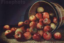 Vintage fruits and vegetables