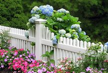 Landscaping Design Front Yard / Landscaping ideas from Beds to Mailboxes.