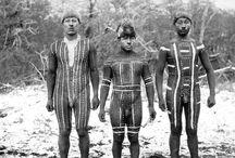 historia indigena chilena
