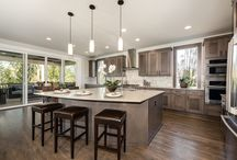 Dream Kitchens / Murray Franklyn Builds Dream Kitchens