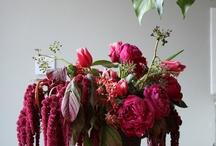 inspiration till accentfärger, snygga blommor och annat!