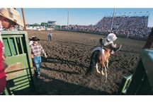 Rodeo - North Dakota style! / Eight seconds seems so long when you're watching a cowboy hang on for dear life. From national professional events to local high school competitions, rodeo isn't just a sport in North Dakota, it's a feel-the-dirt-in-your-teeth way of life.