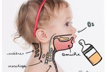 Bébé / Conseils et informations concernant le bébé : son allaitement, sa santé, son éveil, son alimentation, ...