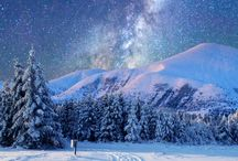 winter & co