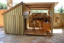casitas para perritos