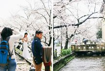 Japan / I have always wanted to go to Japan and see the cherry blossom. It looks so beautiful! / by Alice