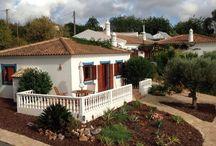 Tuin Montinho da Luz / In en om de tuin groeit bloeit en wordt geschapen