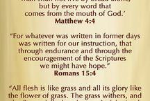 The Power of Gods Word