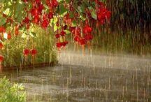 ฝนลม พายุ