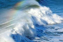 WAVE RAINBOW'S