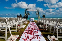 Front Lawn / The Oceanfront Lawn has an astonishing view of the Atlantic Ocean and provides the perfect venue for a beach wedding. This naturally gorgeous venue can be used for ceremonies, receptions and rehearsals.  / by Acqualina Resort & Spa on the Beach