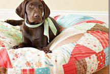 DIY: Pet-Themed Projects / Feeling crafty? Let your pup or feline lend you some inspiration.