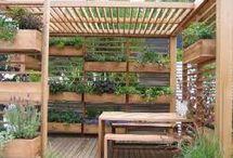 patio/ garden