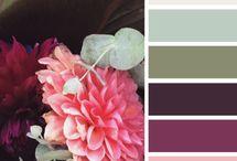 Color Combinations 2015