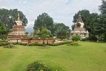 Modern Buddhism / The beauty of Buddhism.