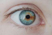 oculars