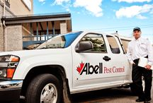 Abell Pest Control Services. / List of some of Abell Pest Control's Services.
