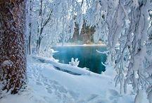 Zimni krajiny