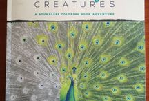 Beautiful Creatures / Beautiful Creatures Greyscale Colouring Book by Nicole Stocker