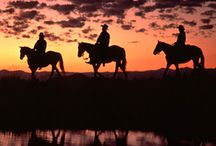 Dude Ranch Vacation / Looking for a Dude Ranch Family Vacation in Colorado! Tumbling River Ranch is the place to visit!