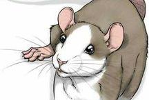 Rats and rats and rats