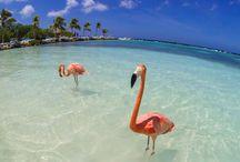Caribe / Fotos, dicas e roteiros de viagem para destinos no Caribe