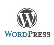 Cogzidel WordPress Development