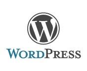 Cogzidel WordPress Development / by Cogzidel Technologies P Ltd