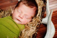 • Baby Elf newborn photos •