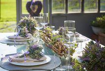 Lavender / EDG Enzo De Gasperi - Lavender Collection
