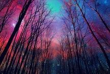 Star lit skies.