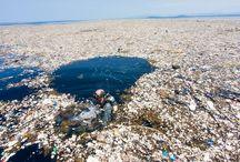 Plastik im Meer / Plastik ist eines der größten Umweltprobleme unserer Zeit. Vor allem die Meere sind voller Plastik. Hier zeigen wir euch, wie schlimm es aussieht.