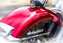 Harley D & Co