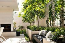 Gartengestaltung / Neugestaltung