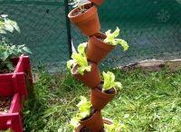 colonnes pots