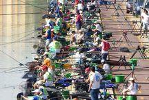 Horgászat / Horgászat
