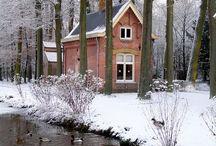 dům, chata v lese