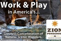 National Park Employment | Zion Ponderosa