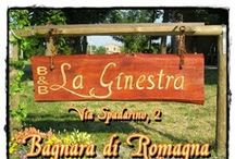 Bed and Breakfast La Ginestra di Bagnara di Romagna - Ravenna - Italy / The B&B is located in a strategic position, the tourist has the possibility to quickly reach all the beauties that the Romagna region offers!
