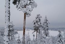 My winter Finland / Odd photos from nearby woods, skiing trips, walks etc.