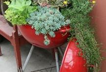 Garden Ideas / by Mary Schwandt
