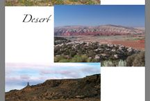 THE RIDER-Desert
