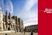 Découverte en Vallée du Rhône 2013 / Un des événements viticole majeur en Vallée du Rhône, 650 Vignerons présent et des milliers d'acheteurs du monde entier.
