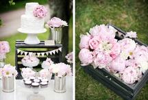 Dream Wedding / by Lindsay Clarke