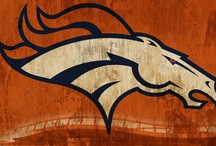 "Orange Crush / In our house we celebrate the ""4 Fs"", family, fun, food, and FOOTBALL.  Go Broncos!!! / by Krystalyn Zink"