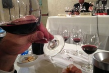 Wine in Puglia / Visit wineries, private wine tasting sessions, or a more informal evening in a restaurant or your own villa with a personal sommelier