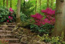 trädgårdsidee