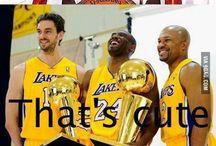 Sports / Basketball